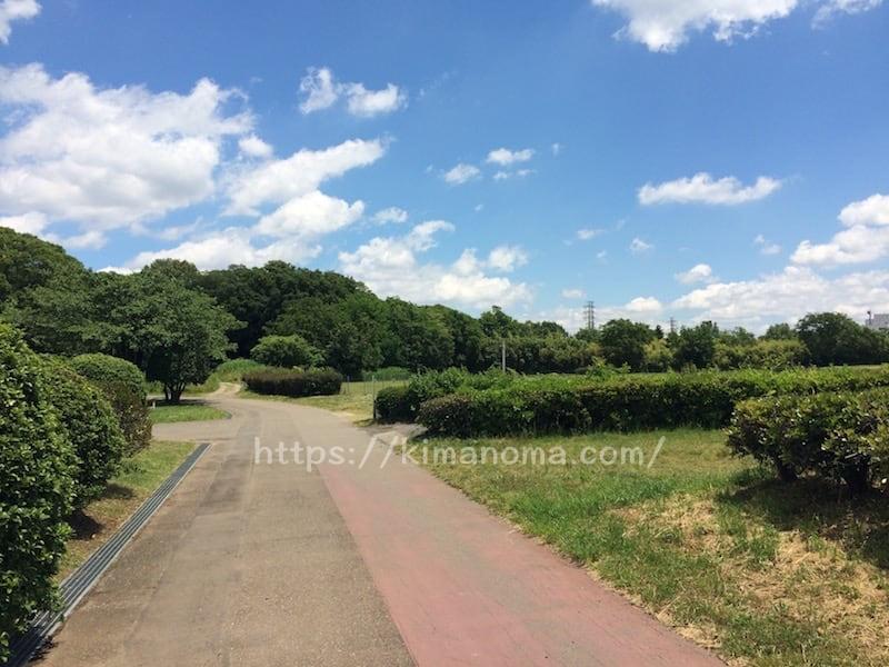 彩湖・道満グリーンパーク内の道