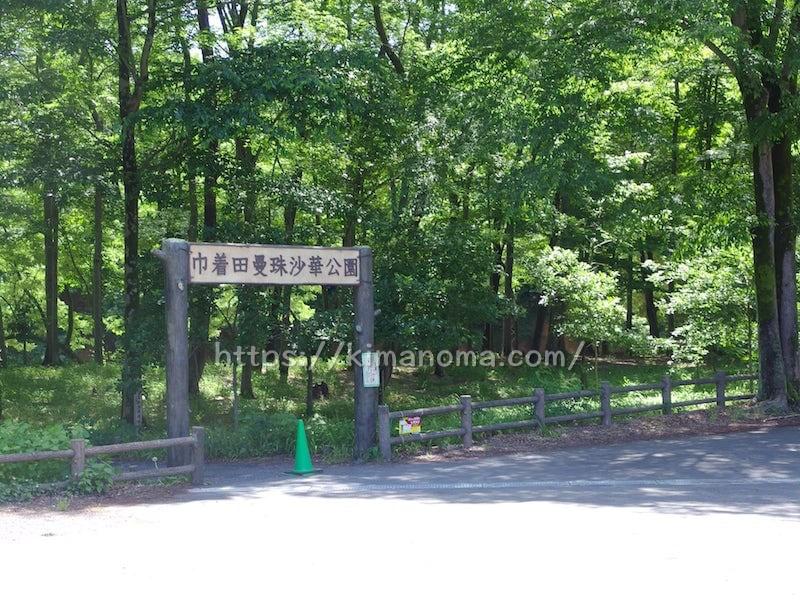 巾着田曼珠沙華公園 ゲート